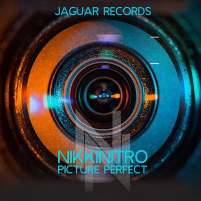 Nikkinitro---Picture-Perfect